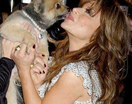 America Idol Picture of the Day: Paula Abdul is for the Dogs