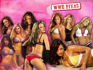 clients � the WWE Divas