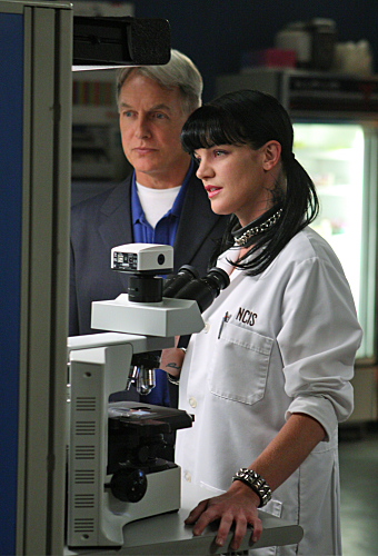 Excellent idea. Ncis gibbs and abby something is
