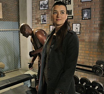 Cote De Pablo Is Pregnant http://www.tvfanatic.com/2009/06/cote-de-pablo-returning-to-ncis/