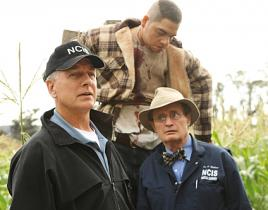 "NCIS Review: ""Child's Play"""