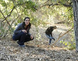NCIS: Los Angeles Review: Rock-Paper-Scissors