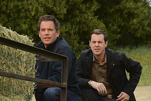 McGee and DiNozzo Photo