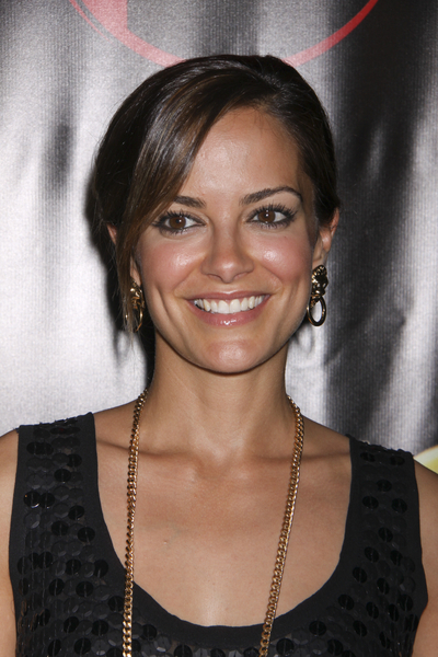 http://static.tvfanatic.com/images/gallery/pic-of-rebecca-budig.jpg