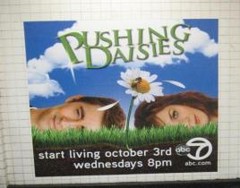 A Pushing Daisies Promo