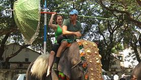 Rachel & Brendan On An Elephant