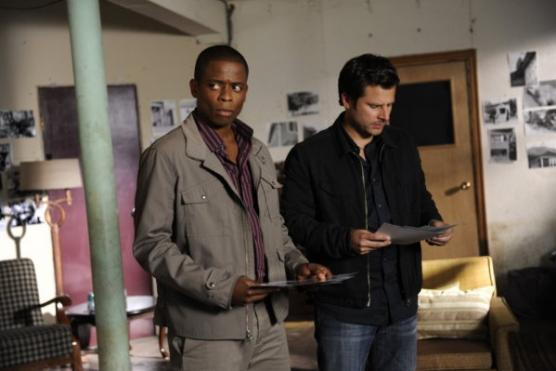 The Psych Team