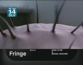 "Fringe Promo: ""Nothing As It Seems"""
