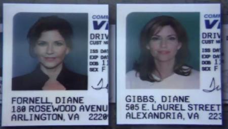 NCIS Gibbs Ex Wives