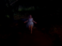 Sookie on the Run